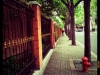 Shanghai-Lilong-street-view