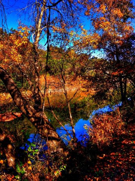 Barton-Creek-Fall-Nov-2014
