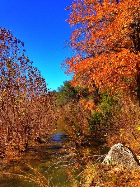 Barton-Creek-Fall-2014