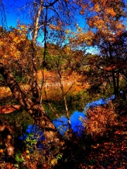 Barton-Creek-Fall-Nov-2014