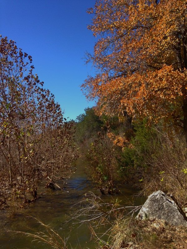 Barton-Creek-Fall-2014-6
