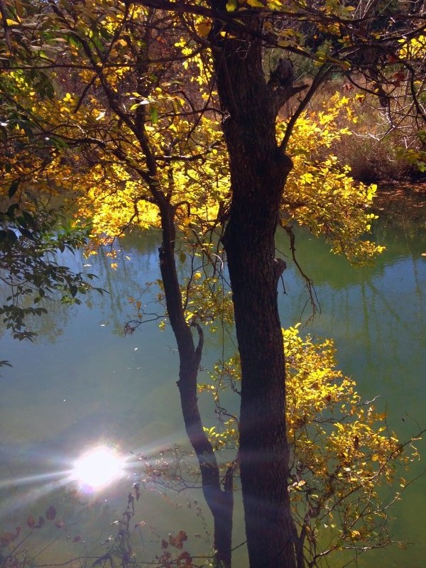 BartonCreek-Fall-2014-9