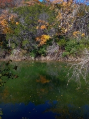 Barton-Creek-Fall-2014-2