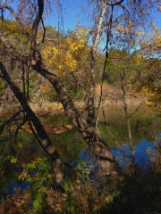 Barton-Creek-Fall-2014-4
