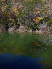 Barton-Creek-Fall-2014-5