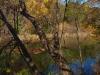Barton-Creek-Fall-2014-4