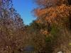 Barton-Creek-Fall-2014-6