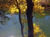 BartonCreek-Fall-2014-9