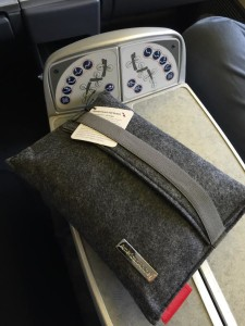 American Airlines Amenity Kit in Business