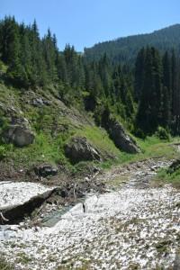 Pirin-Bulgaria-Summer-Snow